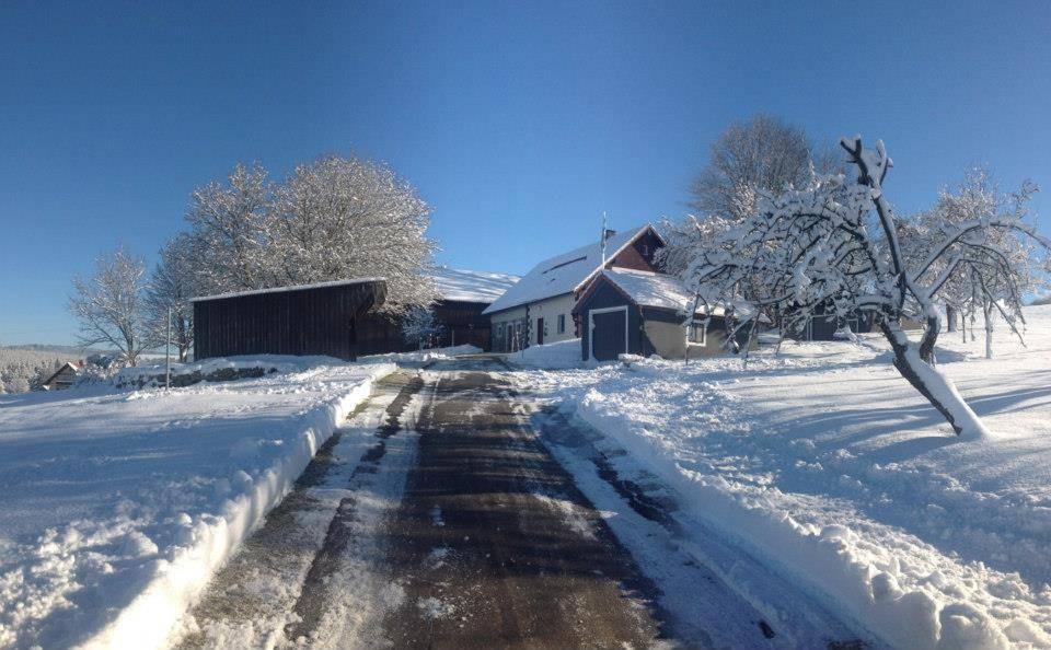 Aff da Alm im Winter